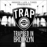 Trapped In Brooklyn Artwork